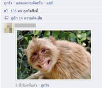 วิธียกเลิกการอัพรูปภาพในช่องคอมเมนต์ Fanpage ของ Facebook