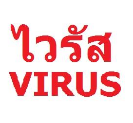 ไวรัสคอมพิวเตอร์ (Virus) คืออะไร